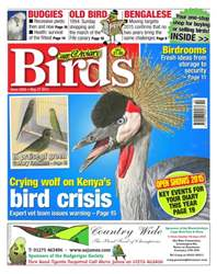 No.5856 Crying Wolf on Kenya's Bird Crisis issue No.5856 Crying Wolf on Kenya's Bird Crisis