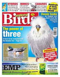 No. 5859 The Power Of Three issue No. 5859 The Power Of Three