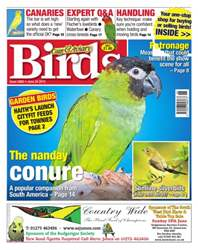 No. 5860 The Nanday Conure issue No. 5860 The Nanday Conure