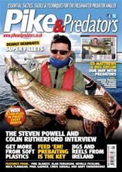 213 issue 213