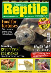 No. 78 Food for Tortoises issue No. 78 Food for Tortoises