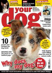 Your Dog Magazine September 2015 issue Your Dog Magazine September 2015