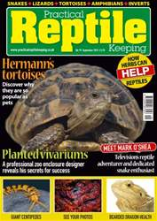 No. 79 Hermann's tortoises issue No. 79 Hermann's tortoises