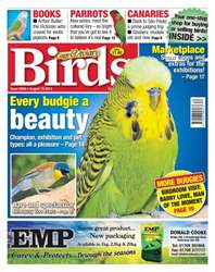 No. 5868 Every budgie a beauty issue No. 5868 Every budgie a beauty