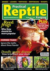 No.30 Reed Frogs issue No.30 Reed Frogs