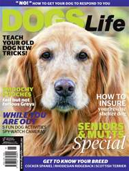 Sept/Oct Issue#133 issue Sept/Oct Issue#133