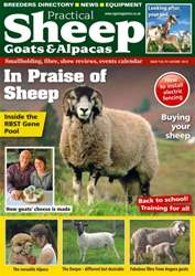 No. 10 In Praise of Sheep issue No. 10 In Praise of Sheep