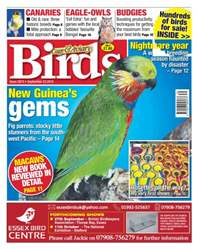 No. 5873 New Guinea's gems issue No. 5873 New Guinea's gems