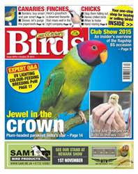 No. 5878 Jewel in the crown issue No. 5878 Jewel in the crown