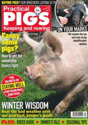 No. 21 Fancy some pigs? issue No. 21 Fancy some pigs?