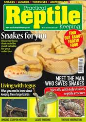 No. 82 Snakes for you issue No. 82 Snakes for you
