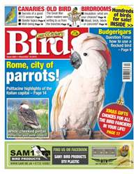 No. 5881 Rome, City Of Parrots issue No. 5881 Rome, City Of Parrots