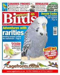 No. 5882 Adventures With Rarities issue No. 5882 Adventures With Rarities