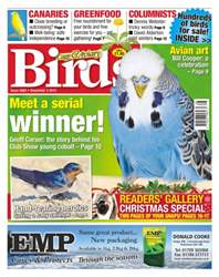 No. 5883 Meet A Serial Winner issue No. 5883 Meet A Serial Winner