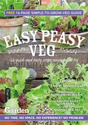 Easy Peasy Veg issue Easy Peasy Veg