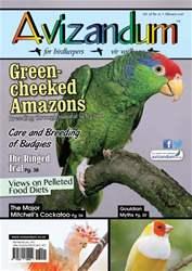 Avizandum Magazine Cover