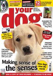 Your Dog Magazine March 2016 issue Your Dog Magazine March 2016