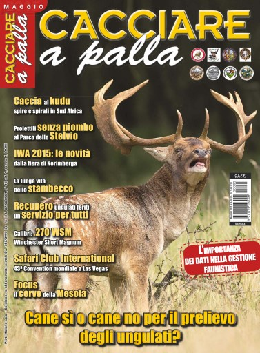 CACCIARE A PALLA Digital Issue