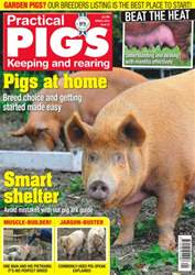 No. 22 Pigs At Home issue No. 22 Pigs At Home