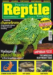No. 86 Keeping Chameleons  issue No. 86 Keeping Chameleons