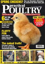 No. 149 Fluffy Fun issue No. 149 Fluffy Fun