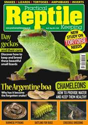 No. 87 Day geckos  issue No. 87 Day geckos