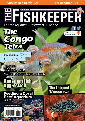 The Fishkeeper Preview