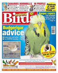 No. 5904 Budgerigar Advice issue No. 5904 Budgerigar Advice