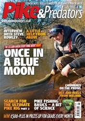 223 issue 223