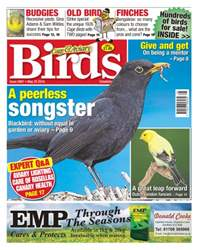 No 5907- A Peerless Songster issue No 5907- A Peerless Songster