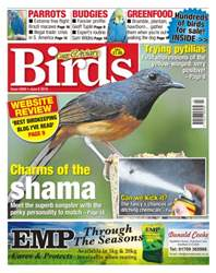 No. 5909 - Charms Of The Shama issue No. 5909 - Charms Of The Shama