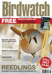 January 2008 issue January 2008