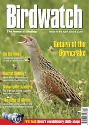 April 2005 issue April 2005