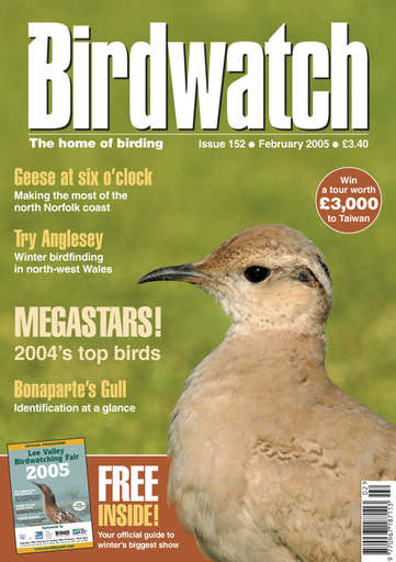 Birdwatch Magazine Preview