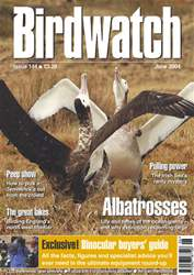 June 2004 issue June 2004