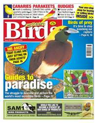 No. 5912 Guides To Paradise issue No. 5912 Guides To Paradise