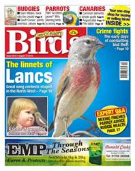 No. 5918 The Linnets Of Lancs issue No. 5918 The Linnets Of Lancs