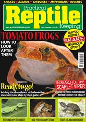 No. 92 Tomato Frogs issue No. 92 Tomato Frogs