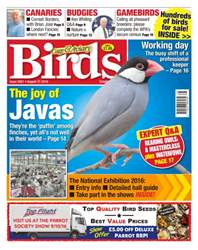 No. 5921 The Joy Of Javas issue No. 5921 The Joy Of Javas