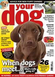 Your Dog Magazine October 2016 issue Your Dog Magazine October 2016