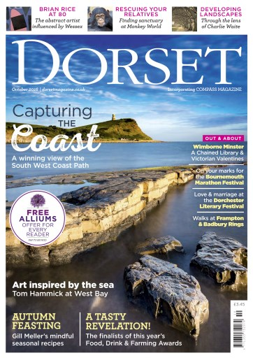 Dorset Digital Issue