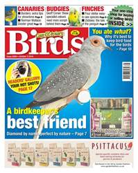 No. 5926 A Birdkeeper's Best Friend issue No. 5926 A Birdkeeper's Best Friend