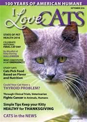 I Love Cats Magazine Cover