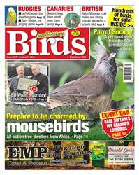 No. 5927 Prepare to be charmed by mousebirds issue No. 5927 Prepare to be charmed by mousebirds