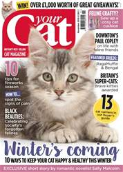 Your Cat Magazine Cover