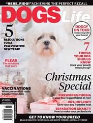 Nov/Dec Issue#140 issue Nov/Dec Issue#140