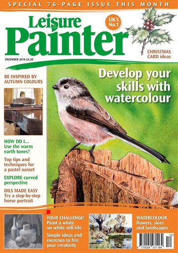 Leisure Painter Digital Issue