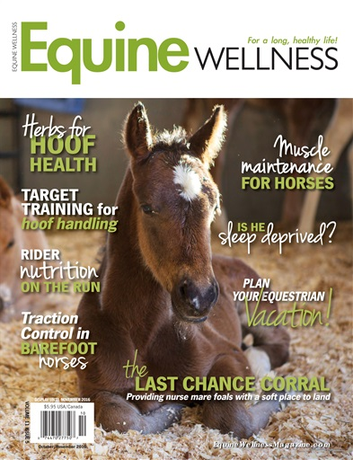 Equine Wellness Preview