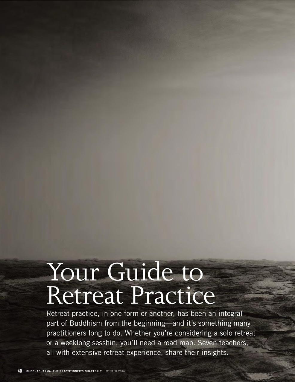 Buddhadharma Magazine The practitioner's Quarterly 15th Special Anniversary