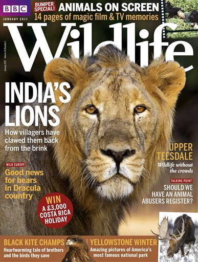 Bbc Wildlife Magazine January 2017 Subscriptions